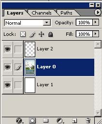 Layer Palette in Adobe Photoshop CS