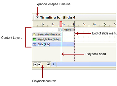 Anatomy of the Timeline in Captivate