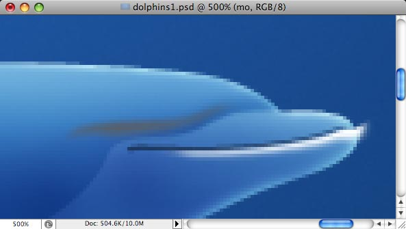 Dolphins - making of - Step 12