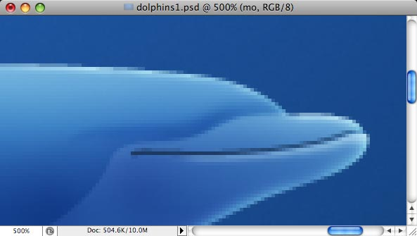 Dolphins - making of - Step 13