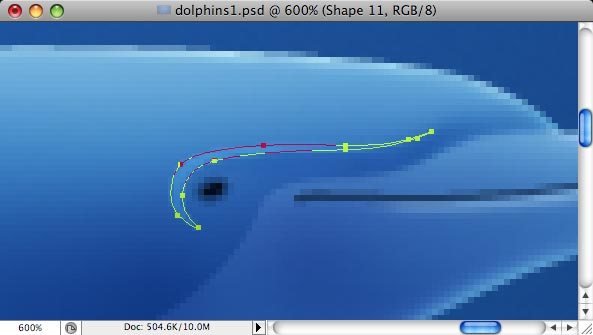 Dolphins - making of - Step 14