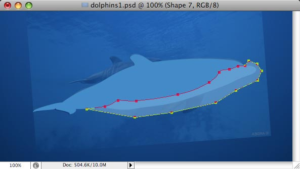 Dolphins - making of - Step 5