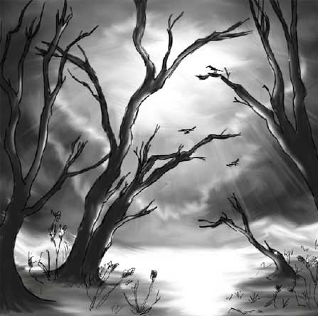 picture a landscape's etude in black and white colors in adobe Photoshop cs
