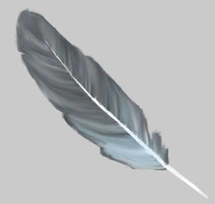 Drawing Feather Bed in adobe photoshop cs