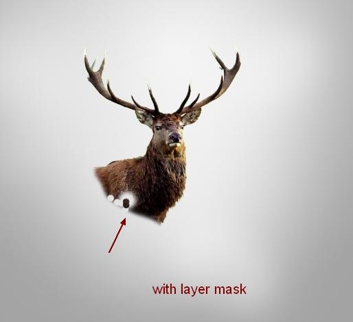 deer3b