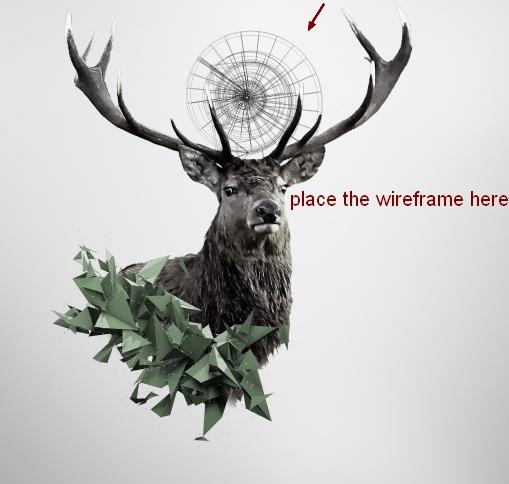 deer7a