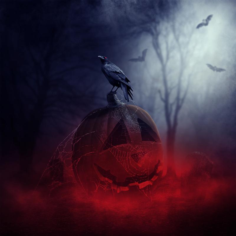 pumpkin24-final